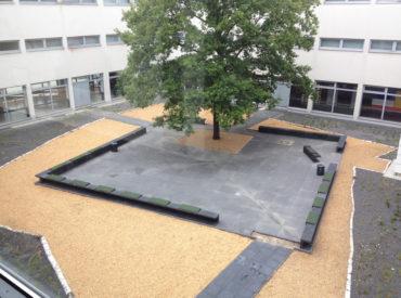 IGS Büssingweg